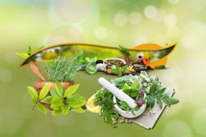 Herbal Medicine and Nutrition