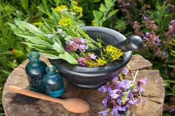 Herbal Medicine/Nutrition